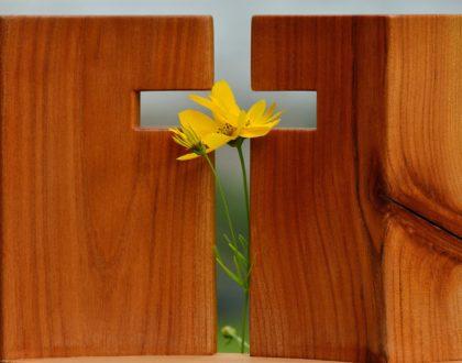 Evangelisation oder Menschen zu Jesus bringen