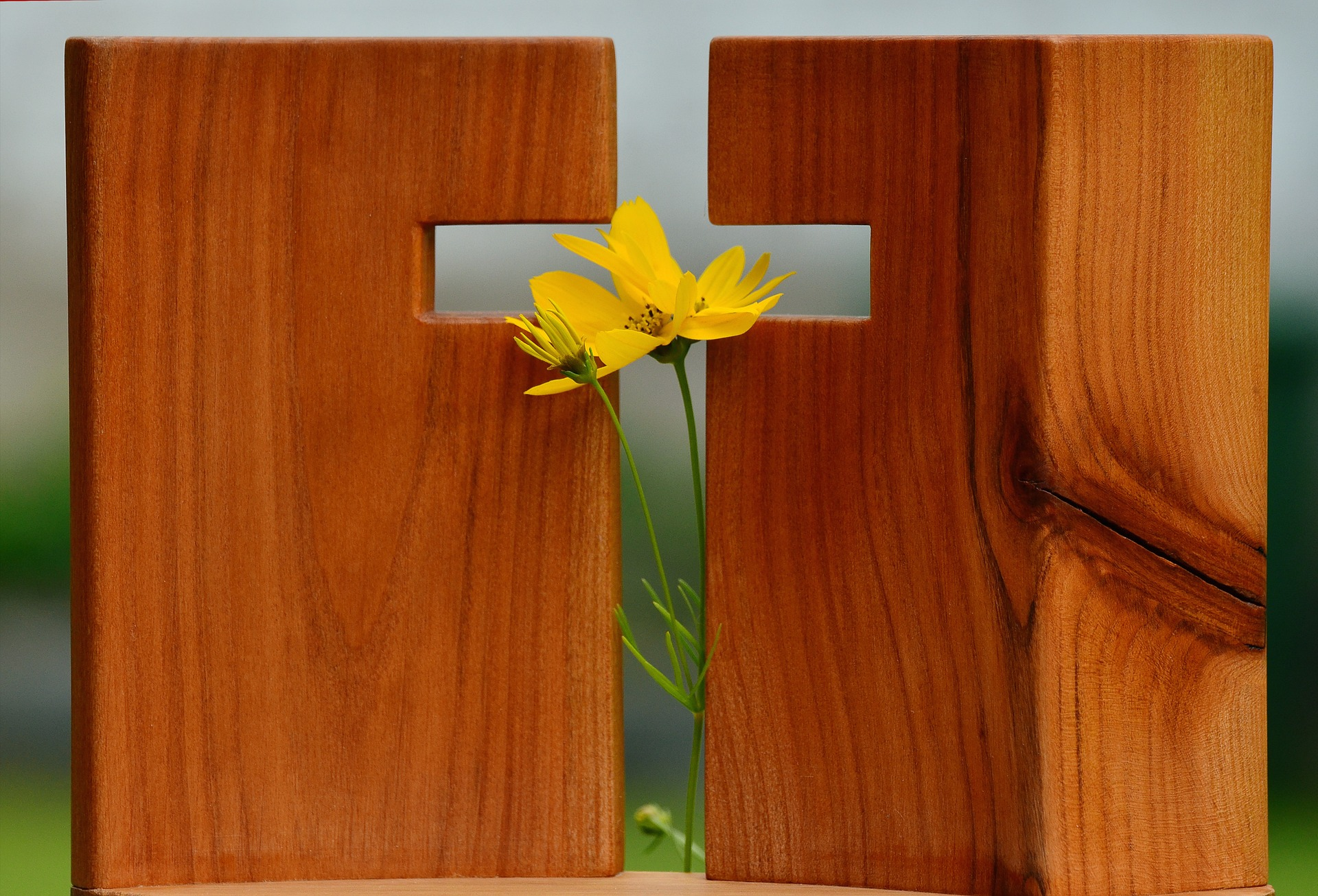 Evangelisation oder evangelisieren - Menschen zu Jesus bringen